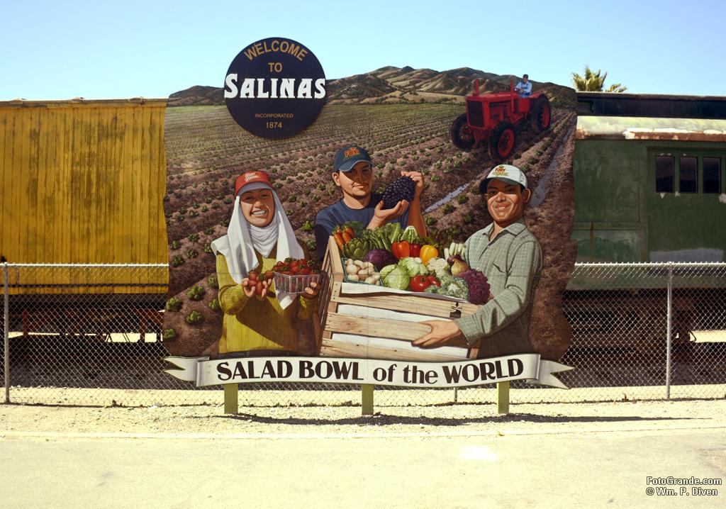 Salinas salad bowl